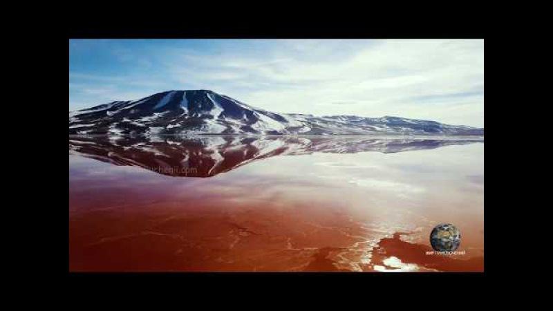 Мир Приключений - Красная лагуна. Фламинго у снежных вершин Анд Боливия. The Red lagoon....