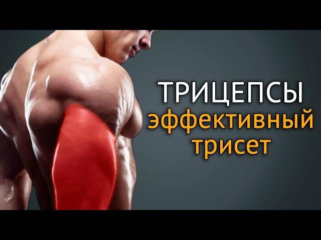 Как накачать трицепс упражнения на трицепс с гантелями rfr yfrfxfnm nhbwtgc eghfytybz yf nhbwtgc c ufyntkzvb