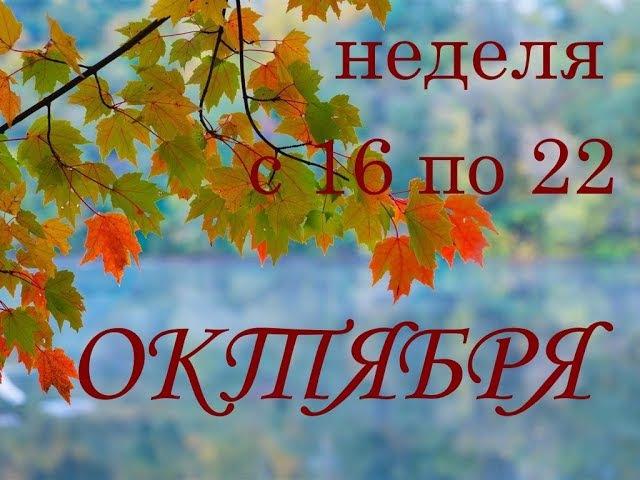 ВОДОЛЕЙ.Прогноз на неделю с 16 по 22 октября 17г.