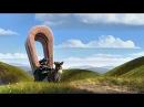 Лоракс Віз, віслюк і відчуття оптимізму Українською / The Lorax in Ukrainian HD