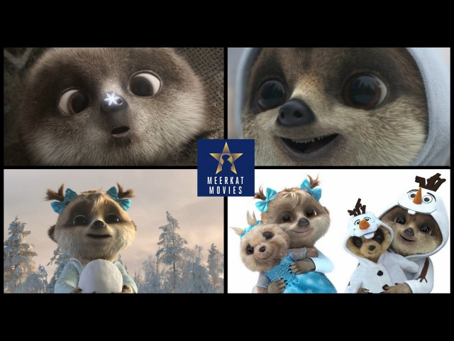 Cute Meerkat Oleg's Magical Dream Compare the Meerkat Awesome Commercial Ever