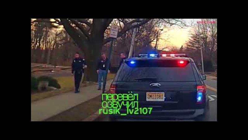Полиция США Копы арестовали чиновника за пьяную езду