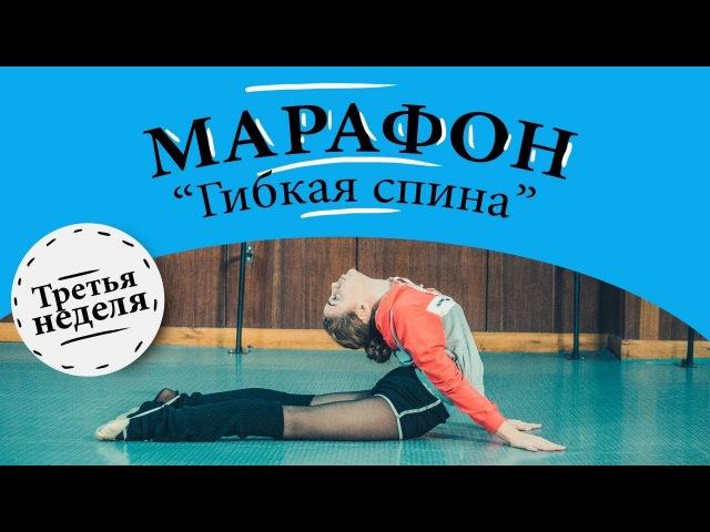 МАРАФОН 3 Неделя КАК РАЗВИТЬ ГИБКОСТЬ СПИНЫ Упражнения на гибкую спину Гимнастика Растяжка