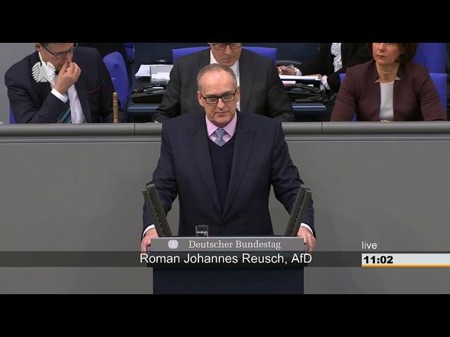 Roman Reusch (AfD):