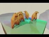 Танцующие медведи