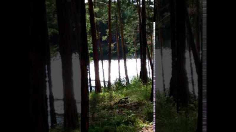 Блики солнца на озере. Вероника Ситникова