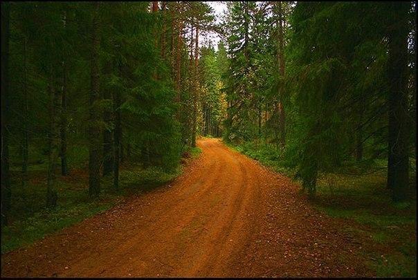 Список природных чудес Ленинградской области