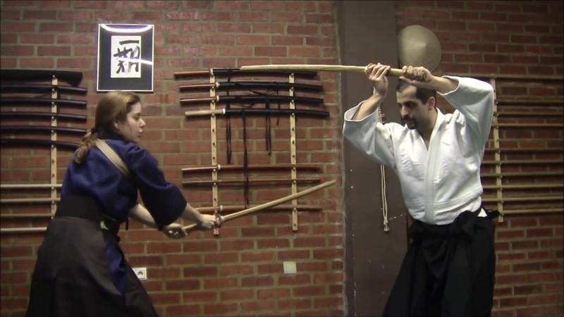 Ogawa Ryu - Kenjutsu Toritake - Juliana Galende - Class Moments - 2014