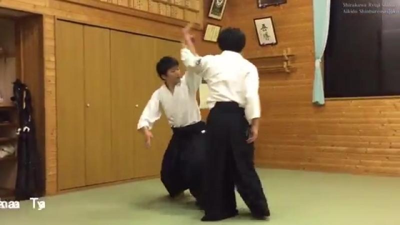 合気道 自由技で投げあう Aikido Throwing to each other.mp4