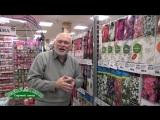 Новое поступление саженцев роз, клематисов, гортензий, ягодных и орехоплодных культур