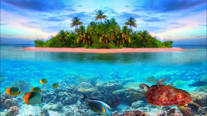 Пиратские приключения на необитаемом острове (Часть3)