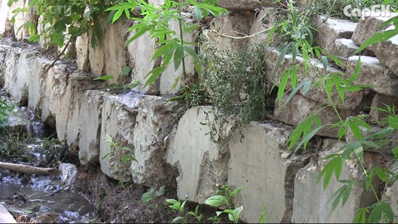 Саратовцы строят дамбы, чтобы защитить дома от затопления