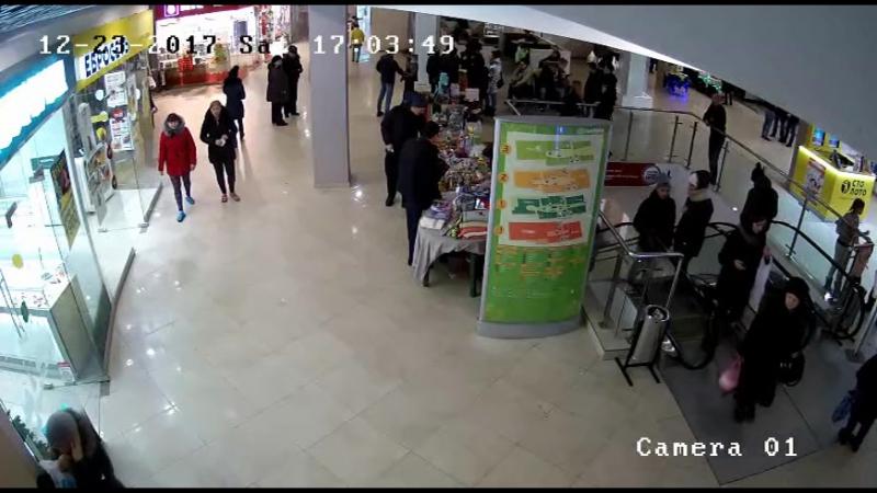 Полицейскими Cыктывкара раскрыта серия мошенничеств, совершенных при покупке товаров в крупных торговых центрах