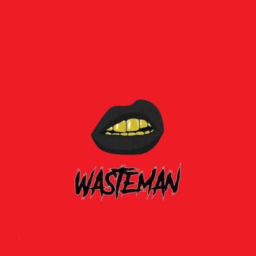 MK альбом Wasteman