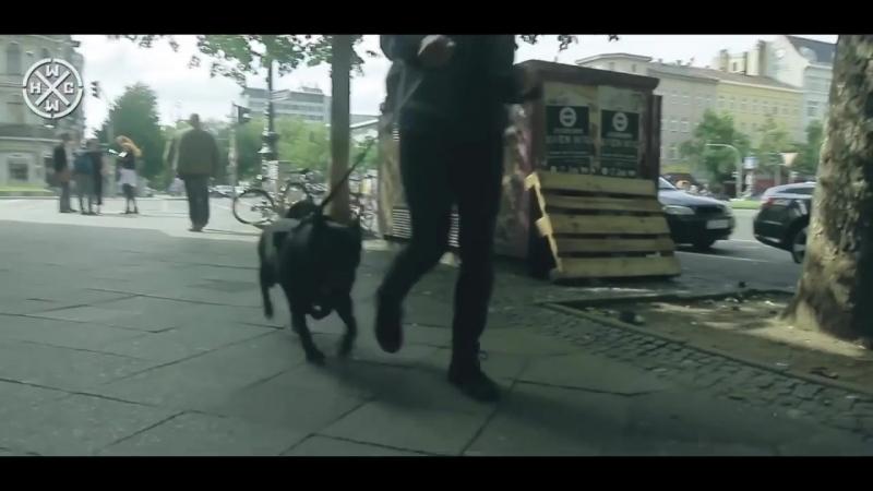 BERLIN BLACKOUTS - IM GONNA GO NOW