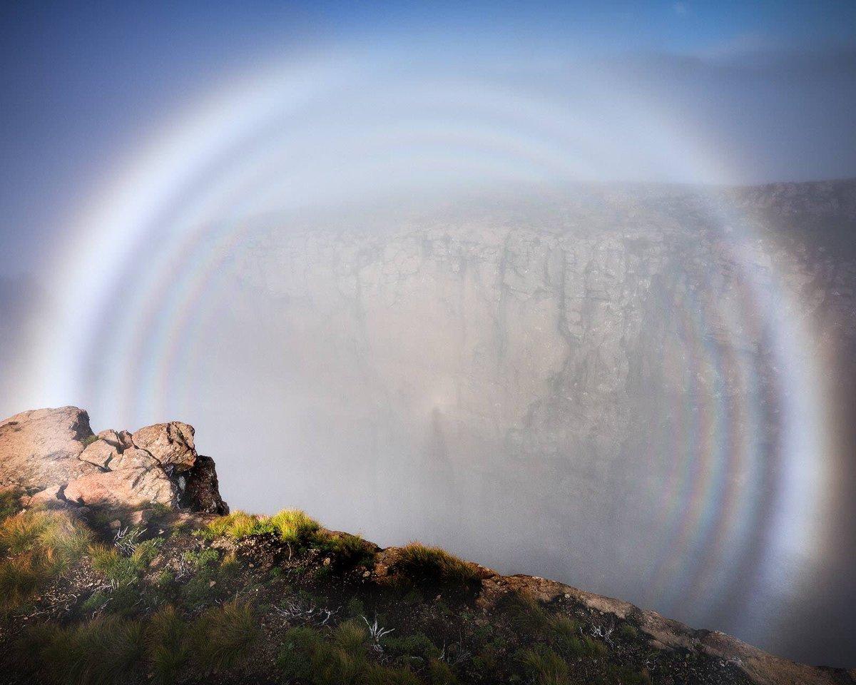 Туманная радуга над Драконовыми горами, ЮАР, Африка. 08 марта 2018 Фотография от Alex Nai Татьяна Мигунова Если Вы попробуете войти в этот коридор тумана, Вы заметите, что туман вокруг Вас исчезает. Этот коридор — оптический обман, который обусловлен обратным рассеянием солнечного света облаком. Облако проплывает ниже горной вершины, с которой была сделана эта фотография. Это явление называется ореолом, Вы могли не раз замечать его, когда летите в самолете. Мельчайшие водяные капельки отражают, преломляют и рассеивают солнечный свет в направлении, противоположном направлению на Солнце. Явление также встречается и в астрономии. Если Вы будете смотреть с Земли в сторону, противоположную направлению на Солнце, то увидите светлое пятно на небе, которое называется противосияние.