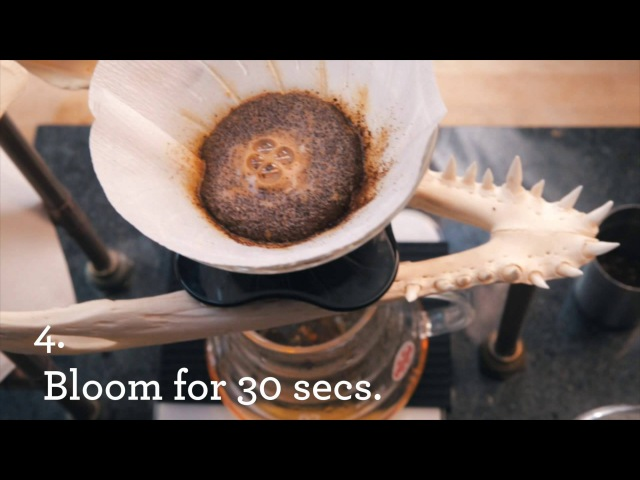 Hario V60 Pour Over Coffee Brew Guide Alternative Brewing