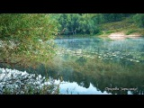 КРАСИВОЕ ВИДЕО..!! Утро, туман, река, пение птиц, звуки природы, природа, релакс, медитация,