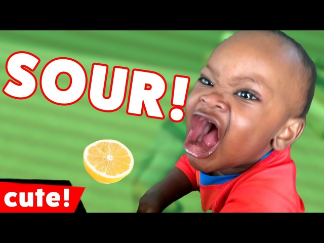 Funniest Kids Reactions To Sour Candy Videos Compilation 2016   Kyoot Kids