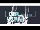 Danny Tenaglia - Music is the answer (Endru bootleg) [2017]