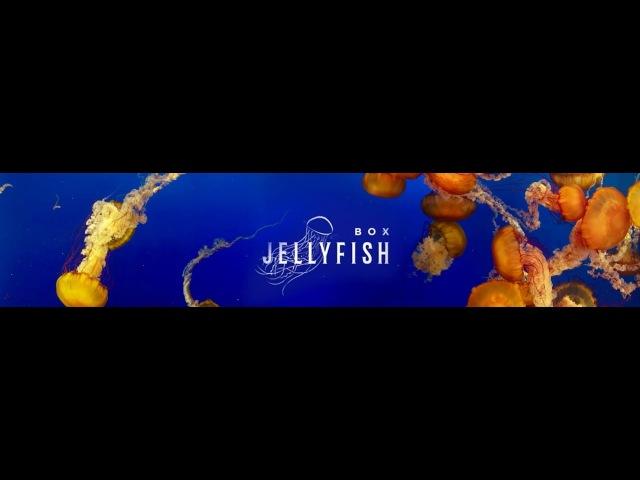Da Flyy Hooligan - Box Jellyfish