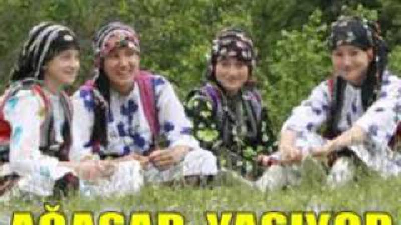 Süreyya Davulcuoğlu - Ağasar Dereleri
