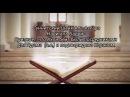 Суннитский Шейх Аль-Азхара Нади аль Бадри - Признает,что Ахли бейт были посредни ...