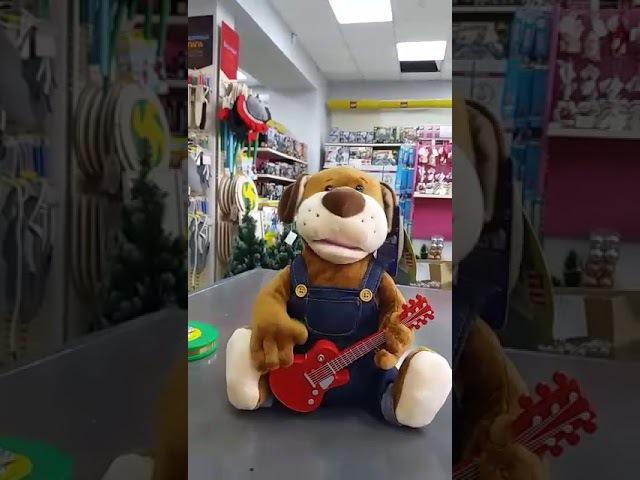 Собака поет песню «Ты да я да мы с тобой»