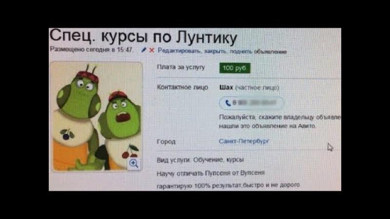 Лютые объявления АВИТО Спец курсы по ЛУНТИКУ