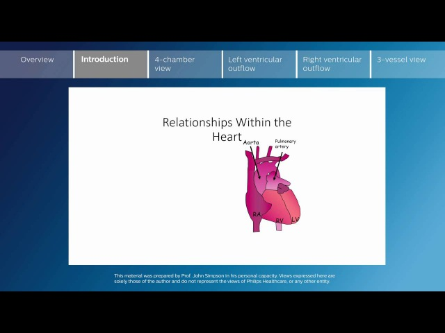 Key screening views of the fetal heart - Part 2 - Introduction
