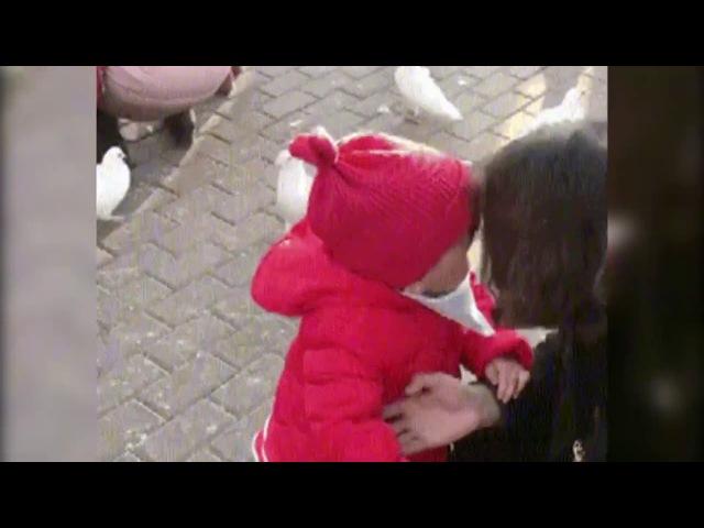 Маленькая девочка отбирает корм у наглого голубя
