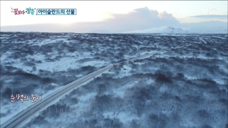 Youth Over Flowers in Iceland 160108 Episode 2