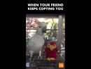 Месть попугая