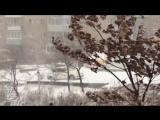 Подборка аварий Владивосток 17 ноября, первый снег. День жестянщика.