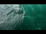 Watch Dirty Old Wedge For Free bodysurfforlife.com
