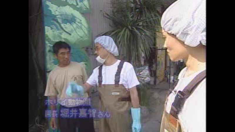 Knight Scoop 2002-08-02 5歳のフーリガン!?/おシッコで守れ!!/鳴らせない主婦たち