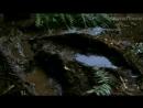 «Парк Юрского периода: Затерянный мир» (1997): Трейлер