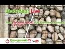 Шлосберг Live 16, 31 июля 2017 года. Тема- «Большой Террор. Преступники и наследники. 1937-2017»