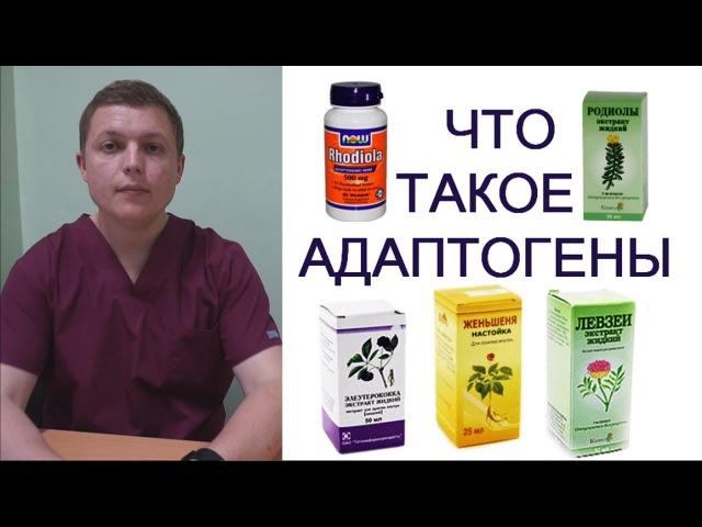 АДАПТОГЕНЫ И СПОРТ   Чем травы полезны   Adaptogenic Herbs