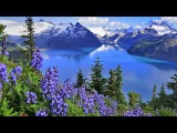 Романтическая музыка для души!!! Ричард КлайдерманMusic for the soulInstrumental music