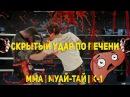 Скрытый удар по печени - тайский бокс, ММА crhsnsq elfh gj gtxtyb - nfqcrbq ,jrc, vvf