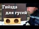 Гнезда для гусей Вернул гусыню в общее стадо