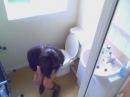 скрытая камера в туалете офиса