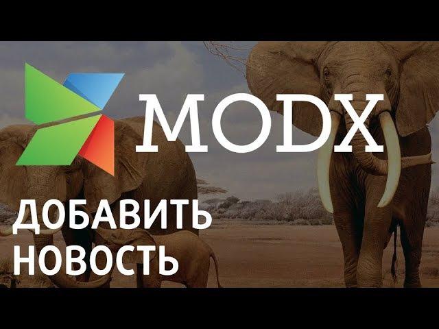 Как добавить новость на Modx «Ядвига:Стартовый пакет»