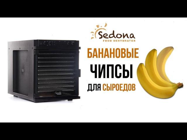 Банановые чипсы в дегидраторе Tribest Sedona Express