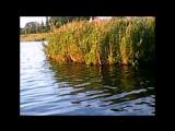 Гусь-Хрустальный прогулка по озеру