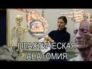 Факультативные занятия по анатомии