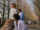 Т/С Злоключения Росинанта, моей любимой собаки 7 серия 2001г