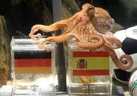 осьминог пауль