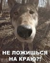 Олег Грабак фото #20